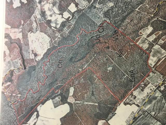 915 ac Field Bridge Rd, Bishopville, SC 29010 (MLS #145104) :: The Litchfield Company