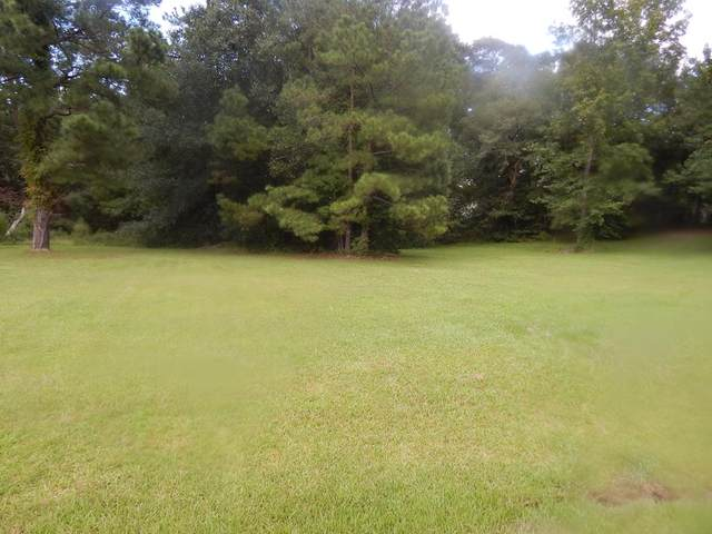 317 Lake Arbu Drive, Manning, SC 29102 (MLS #145220) :: Gaymon Realty Group