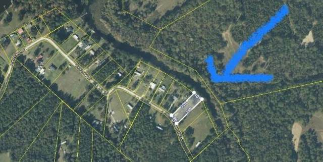 tbd Clearview Dr., Manning, SC 29102 (MLS #145253) :: Gaymon Realty Group
