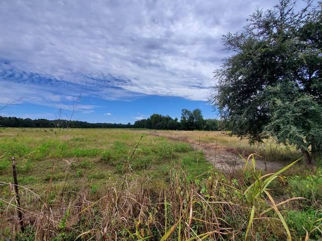0 Langley Road, Orangeburg, SC 29115 (MLS #145280) :: Gaymon Realty Group