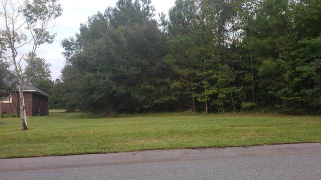 3450 Green View Parkway, Sumter, SC 29154 (MLS #145661) :: The Litchfield Company