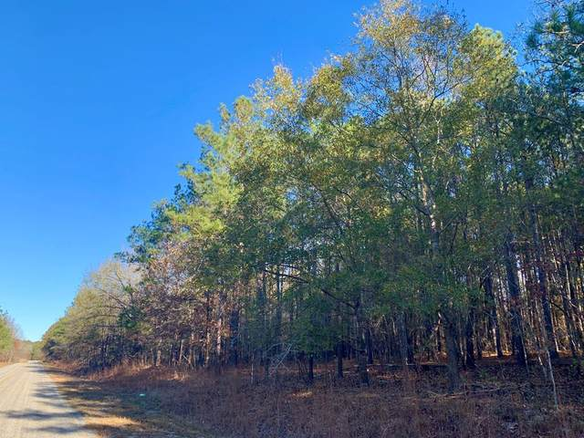 0 Springvale, Bishopville, SC 29010 (MLS #145896) :: The Litchfield Company