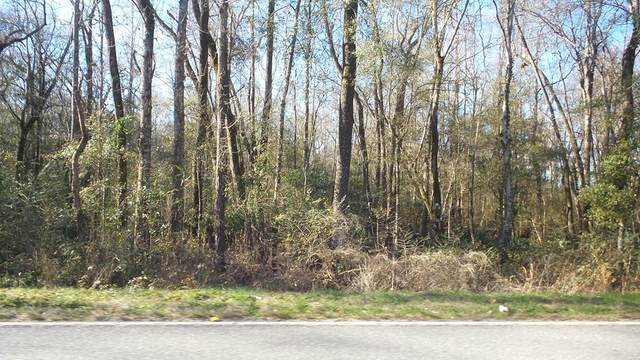 3806 Highway 176, Santee, SC 29059 (MLS #146337) :: Metro Realty Group