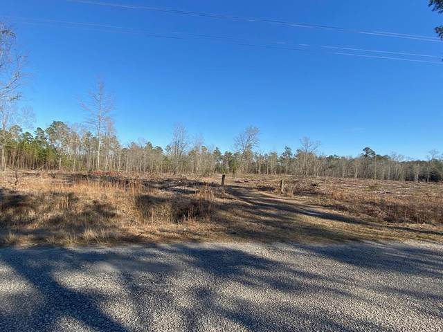 1552 Community Dr, Summerton, SC 29148 (MLS #146380) :: The Latimore Group