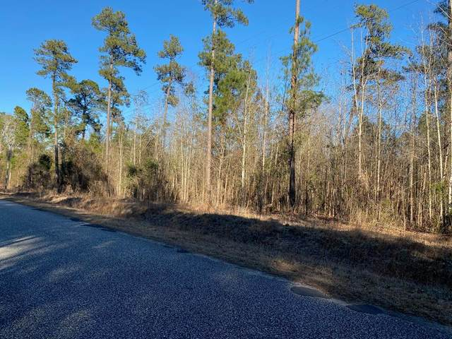 0 Community Dr, Summerton, SC 29148 (MLS #146381) :: The Latimore Group