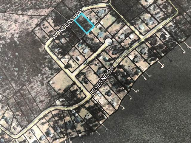 TBD Lot 39A Wonders Way, Manning, SC 29102 (MLS #146480) :: Gaymon Realty Group