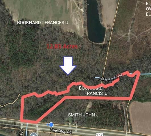 0 Five Chop Road, Orangeburg, SC 29115 (MLS #146484) :: The Litchfield Company