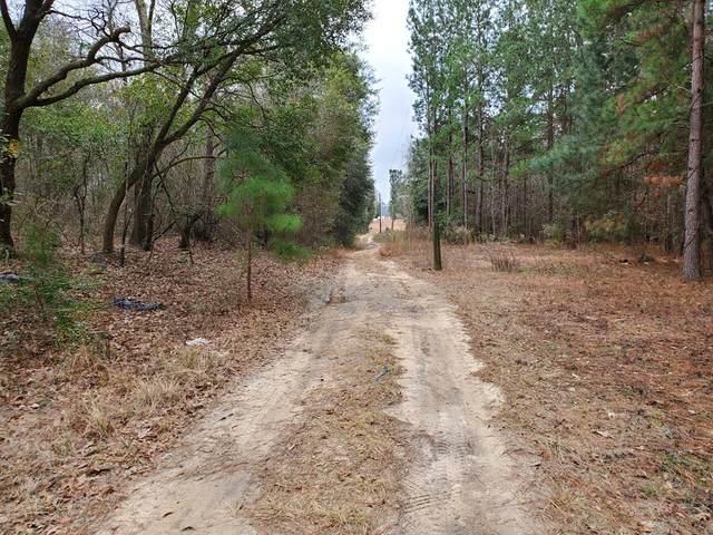 0 Rebecca Lane, Eutawville, SC 29048 (MLS #146545) :: The Litchfield Company