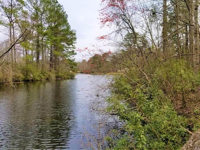 Lot 14 Wild Wood Lane, Elloree, SC 29047 (MLS #146864) :: The Litchfield Company
