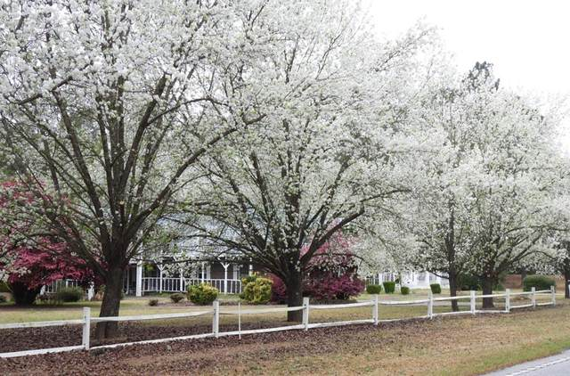 2122 Cains Mill Rd, Sumter, SC 29154 (MLS #146902) :: The Litchfield Company