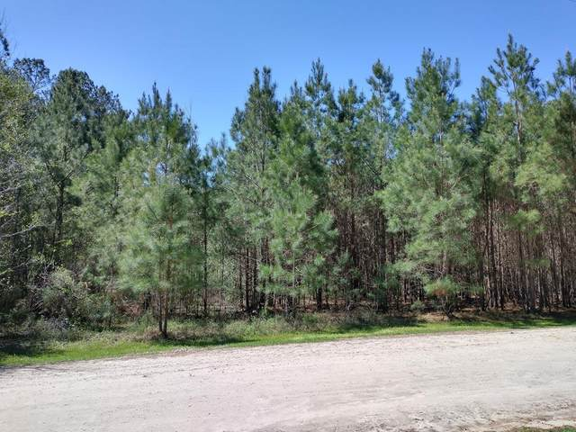 1124 Winding Pond Rd, Manning, SC 29102 (MLS #147099) :: The Litchfield Company