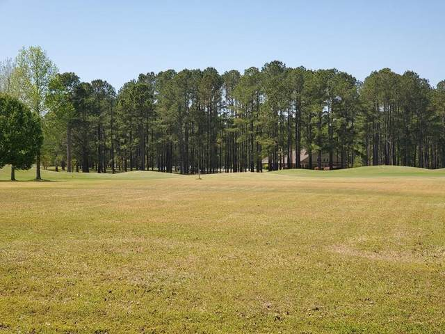 309 Plantation Drive, Manning, SC 29102 (MLS #147132) :: The Litchfield Company