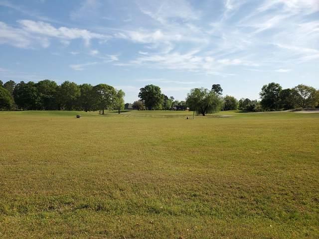 18 North Lake Circle (Lot 12), Manning, SC 29102 (MLS #147211) :: The Litchfield Company