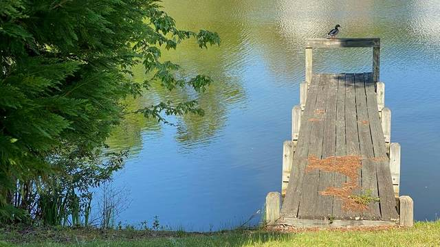 15 North Lake Circle (Lot 26), Manning, SC 29102 (MLS #147228) :: The Litchfield Company