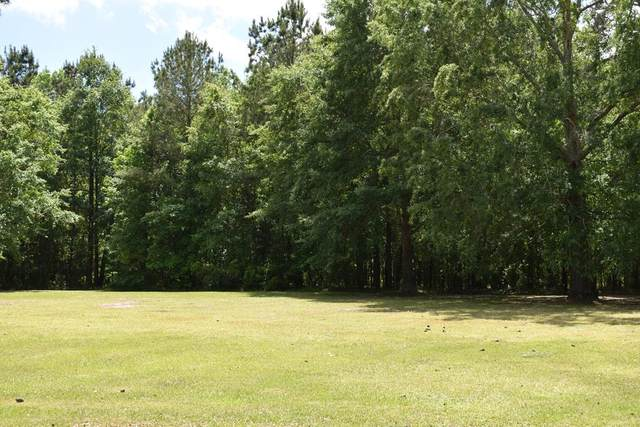 153 Woodlake Dr. (C-48), Manning, SC 29102 (MLS #147495) :: The Litchfield Company