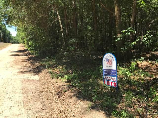 0 Oak Ridge Drive, Summerton, SC 29148 (MLS #147605) :: The Litchfield Company