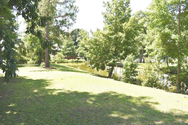 11 Ridge Lake Dr., Manning, SC 29102 (MLS #148096) :: Gaymon Realty Group
