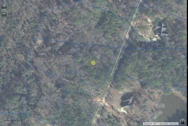 6720 Stateburg Hills Dr., Stateburg, SC 29154 (MLS #148156) :: Gaymon Realty Group
