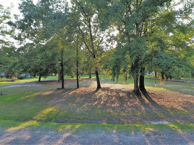 0 Pond View Dr, Manning, SC 29102 (MLS #148345) :: The Latimore Group