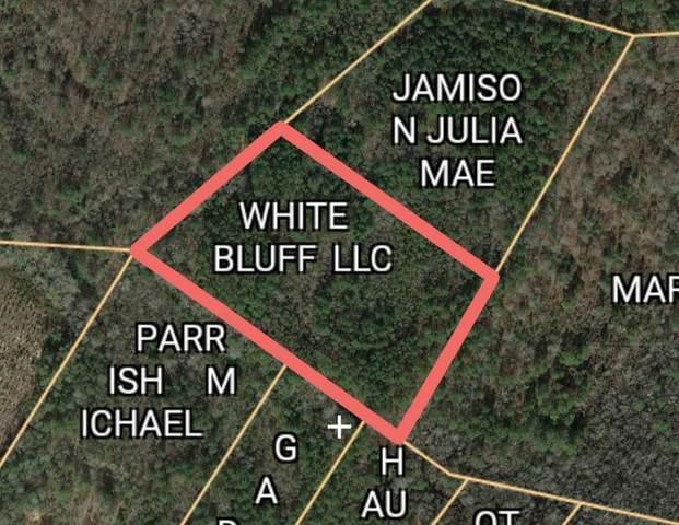 0 Calhoun Road, Branchville, SC 29432 (MLS #148351) :: Gaymon Realty Group