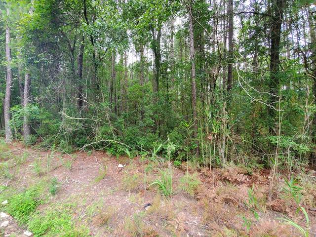 0 2nd Texas Road, Saint George, SC 29477 (MLS #148387) :: The Latimore Group