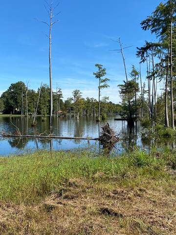 2275 Watersong Run, Sumter, SC 29150 (MLS #148883) :: The Litchfield Company