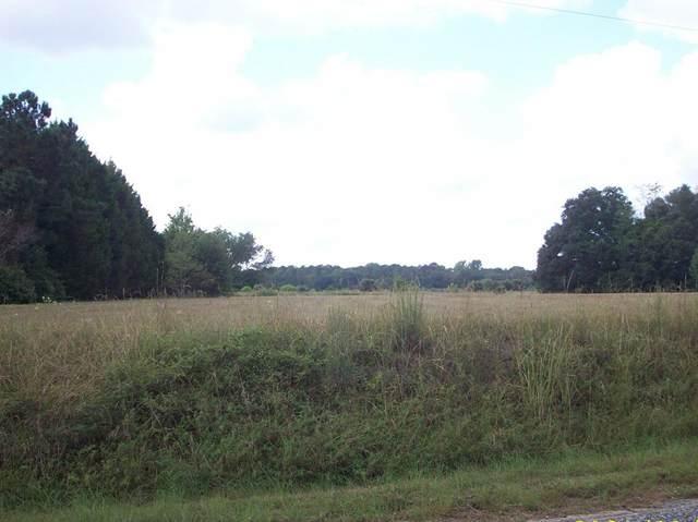 Z41-145 Idajames Lane, Dalzell, SC 29040 (MLS #148903) :: The Litchfield Company