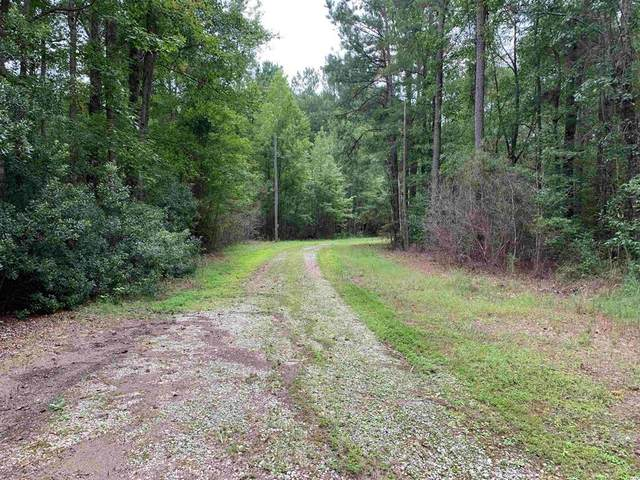 43 AC Hwy 527 Black River Rd, New Zion, SC 29111 (MLS #148965) :: The Litchfield Company