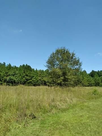 01 Misty Wood, Elloree, SC 29047 (MLS #149099) :: The Litchfield Company