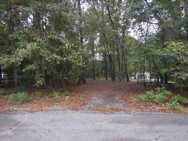 40 Old Spring Court, Sumter, SC 29154 (MLS #149199) :: The Litchfield Company