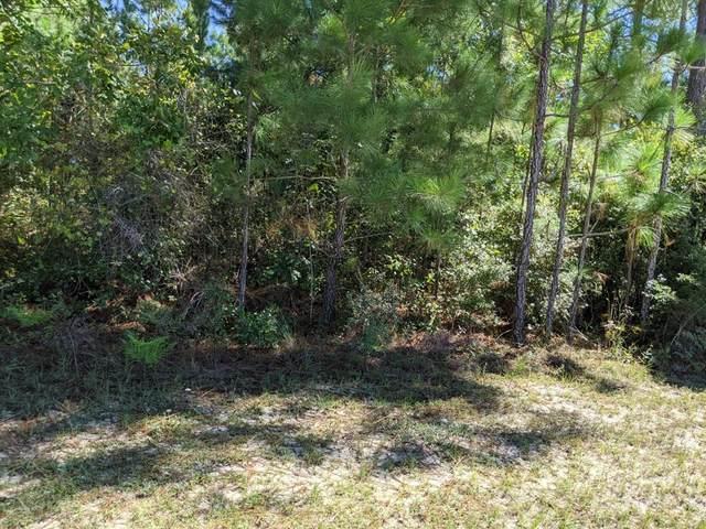 Lot 18 Twisted Oak Trail, Elloree, SC 29047 (MLS #149247) :: The Litchfield Company