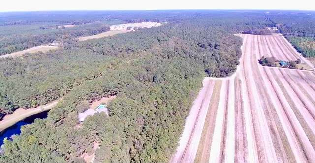 2356 State Road, Summerville, SC 29486 (MLS #149407) :: The Litchfield Company