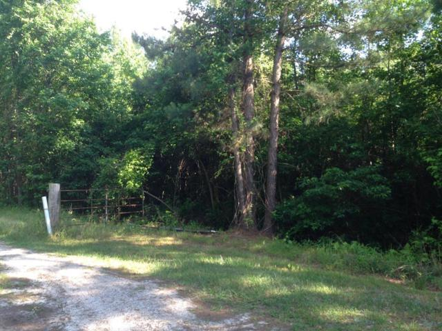 0 Paxville Highway, Manning, SC 29102 (MLS #140772) :: The Litchfield Company