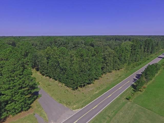 TBD State Park Rd & Acorn Dr, Santee, SC 29142 (MLS #141361) :: The Litchfield Company