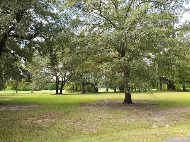 26 Fairway Drive (I-24&25), Manning, SC 29102 (MLS #145315) :: The Litchfield Company