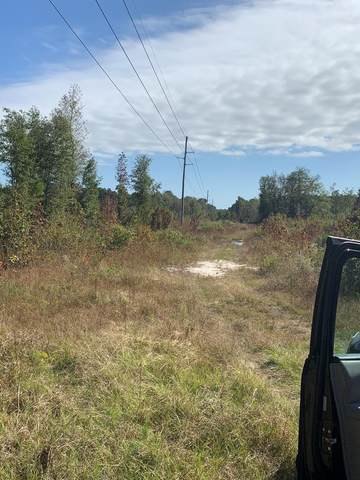 0 W Foxworth Mill Rd, Sumter, SC 29150 (MLS #145481) :: Gaymon Realty Group