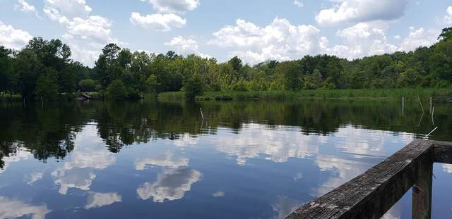 61 Ridge Lake Dr, Manning, SC 29102 (MLS #144534) :: The Litchfield Company