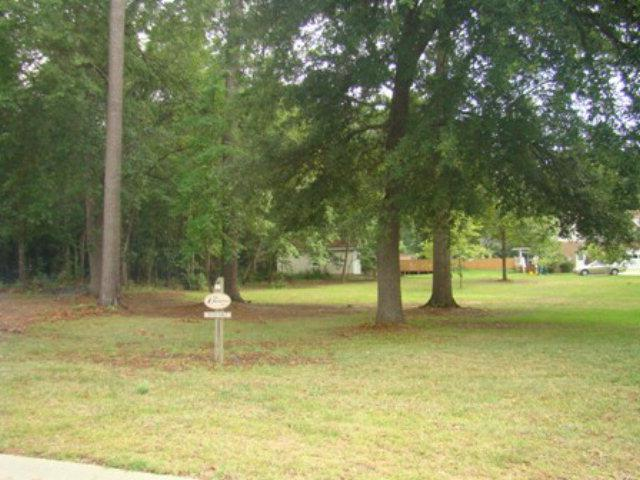110 Twilight Drive, Sumter, SC 29150 (MLS #108466) :: The Litchfield Company