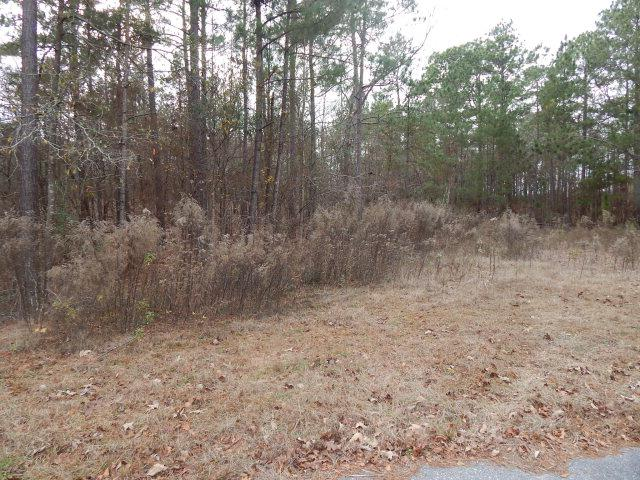 Lot 56 Sorin Circle, Santee, SC 29142 (MLS #122626) :: The Litchfield Company