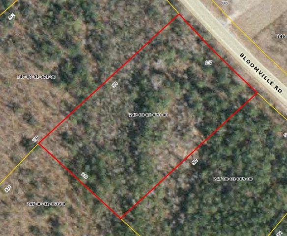 12124 Bloomville Road, Manning, SC 29102 (MLS #129543) :: The Latimore Group