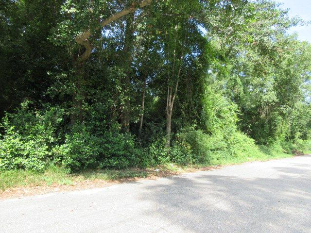 974 Meadowbrook Rd., Sumter, SC 29153 (MLS #129841) :: The Litchfield Company