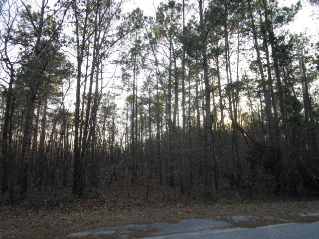 Lot 54 Sorin Cir, Santee, SC 29142 (MLS #131672) :: The Litchfield Company