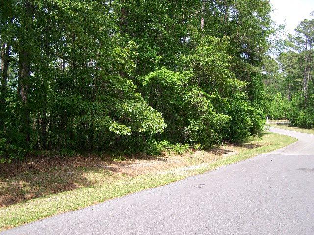 Lot 42 Plantation Drive - Photo 1