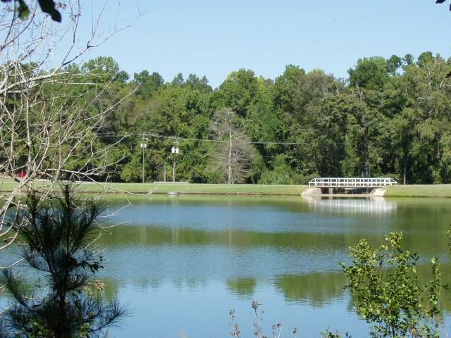 31 Plantation Drive, Santee, SC 29142 (MLS #134108) :: Metro Realty Group