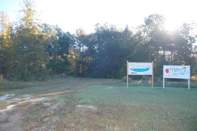 TBD White Oak / Players Course Drive - Photo 1