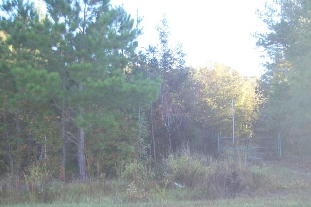 TBD White Oak Drive - Photo 1