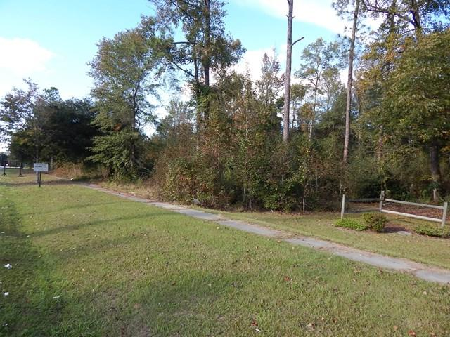 00 Old Hwy #6, Elloree, SC 29047 (MLS #134525) :: Gaymon Gibson Group