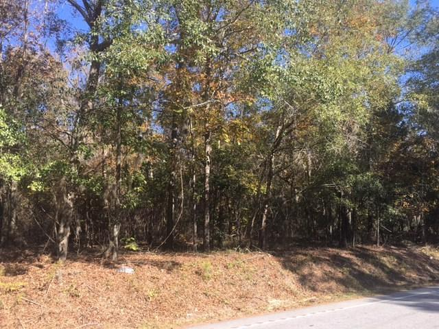 2615 Cains Mill, Sumter, SC 29154 (MLS #134592) :: The Litchfield Company