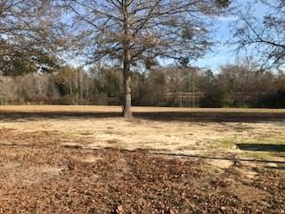 350 Wendernere, Sumter, SC 29154 (MLS #134948) :: Gaymon Gibson Group