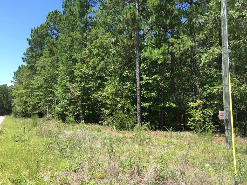 1307 Hidden Oak Drive - Photo 1